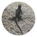 Black Lizard Classic Round Sticker