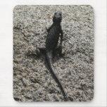 Black Lizard Mouse Pad