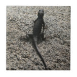 Black Lizard Tile