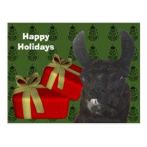 Black Llama Farm Animal Christmas Holiday Postcard