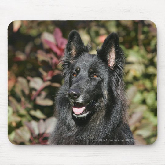 Black Long Haired German Shepherd Mouse Pad