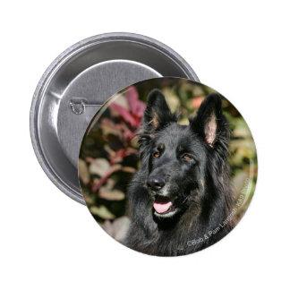 Black Long Haired German Shepherd Pinback Button