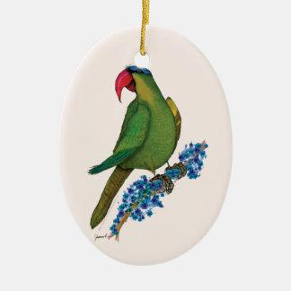 black lored parrot, tony fernandes ceramic ornament