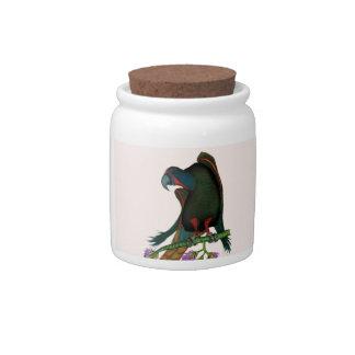 black lory parrot, tony fernandes ceramic candy jar