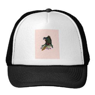 black lory parrot, tony fernandes trucker hat