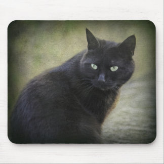 Black male cat with green eyes mouse pad