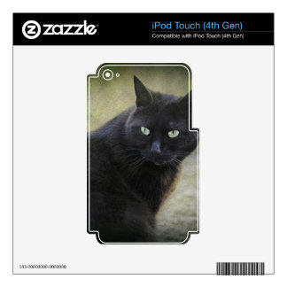 Black male cat with green eyes skins for iPod touch 4G