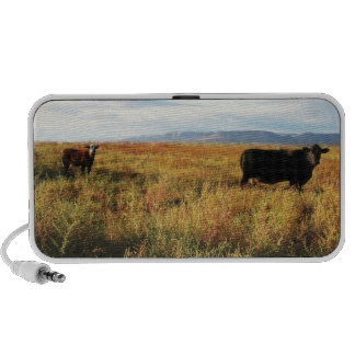 Black Mama Cow and White Face Red Calf Travel Speakers