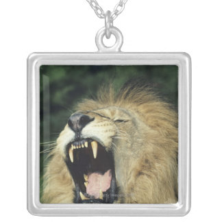 Black-maned male African lion yawning, headshot, Square Pendant Necklace