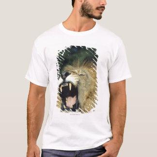 Black-maned male African lion yawning, headshot, T-Shirt