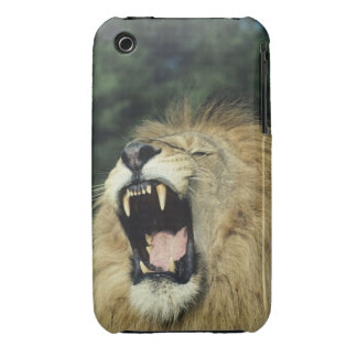 Black-maned male African lion yawning iPhone 3 Case-Mate Case