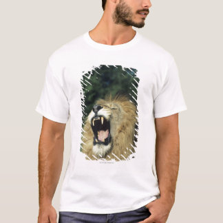Black-maned male African lion yawning T-Shirt
