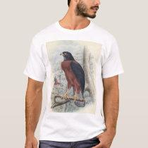 Black-mantled Goshawk, adult female T-Shirt