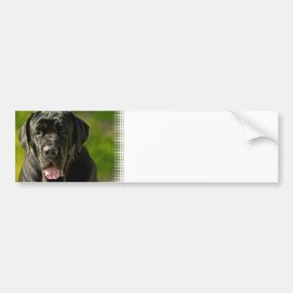 Black Mastiff Bumper Sticker Car Bumper Sticker