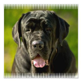 """Black Mastiff Invitations 5.25"""" Square Invitation Card"""