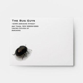 Black Minute Hooded Beetle Envelopes