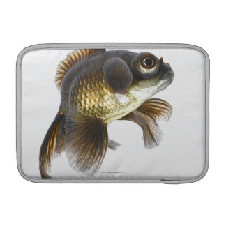 Black moor goldfish (Carassius auratus) 2 MacBook Sleeve