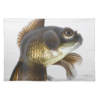 Black moor goldfish (Carassius auratus) 2 Placemats