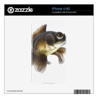 Black moor goldfish (Carassius auratus) 2 Skins For The iPhone 4S