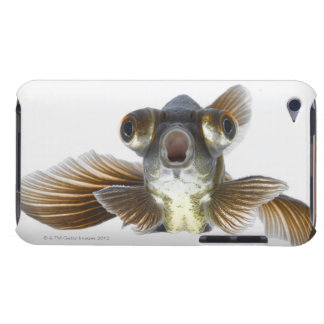 Black moor goldfish (Carassius auratus) iPod Touch Cover