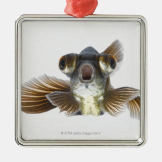 Black moor goldfish (Carassius auratus) Metal Ornament