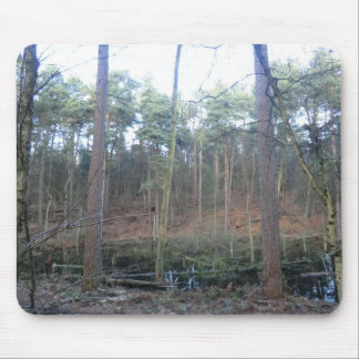 Black Moss in Delamere Forest, Cheshire Mouse Pad