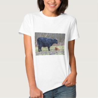 Black mother scottish highlander cow with calf shirt