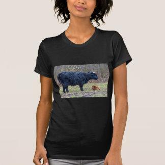 Black mother scottish highlander cow with calf t-shirt