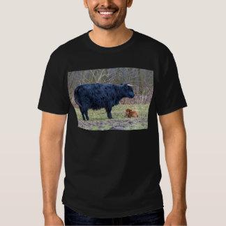 Black mother scottish highlander cow with calf t shirt