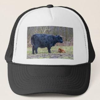 Black mother scottish highlander cow with calf trucker hat