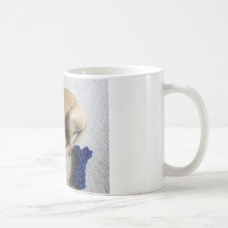 Black-mouth cur puppy with blue toy coffee mug
