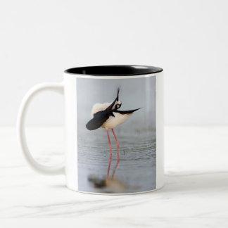 Black-necked stilt preening Two-Tone coffee mug