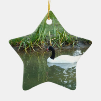 Black Necked Swan Ceramic Ornament