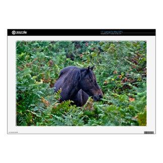 Black New Forest Pony & Forest U.K. Laptop Decals