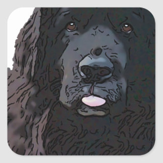 Black Newf Cartoon Square Sticker