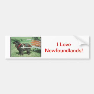 Black Newfoundland Bumper Sticker