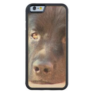 Black Newfoundland Dog Carved® Maple iPhone 6 Bumper Case
