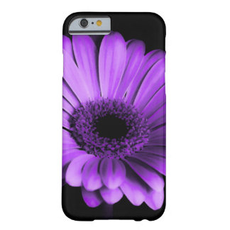 Black / Nighttime with Purple Gerbera Daisy Flower Barely There iPhone 6 Case