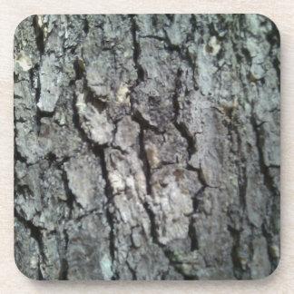 Black Oak Bark Coaster