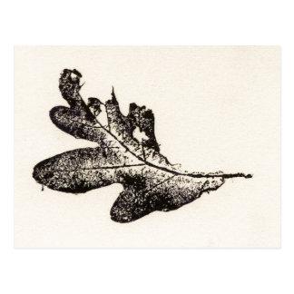 """Black Oak Leaf"" Country Roads Postcard"
