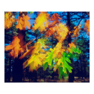 Black Oak Leaves blowing in the Wind Poster