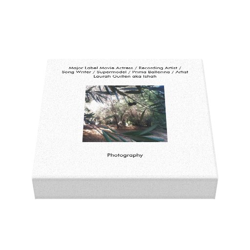 Black Olive Tree Garden Gallery Wrapped Canvas
