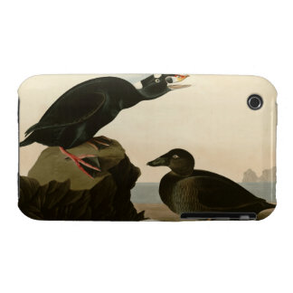 Black or Surf Duck Case-Mate iPhone 3 Case