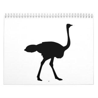 Black ostrich calendar
