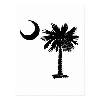 Black Palmetto Postcard