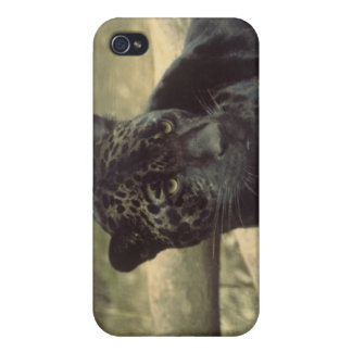 Black Panther Case Cases For iPhone 4