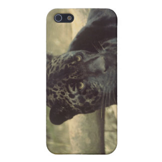 Black Panther Case Covers For iPhone 5