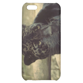 Black Panther Case iPhone 5C Cases