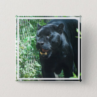 Black Panther Cat   Button