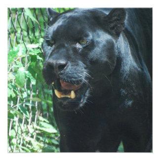 Black Panther Cat Invitation